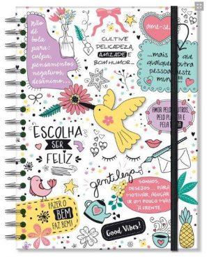 caderno-colegial-96-fls-beija-flor